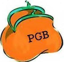 PGB-voor-scootmobiele